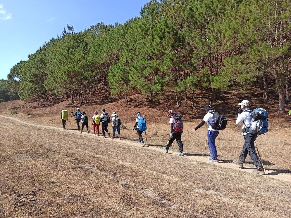 đoàn trekking qua cánh đồng cỏ cháy