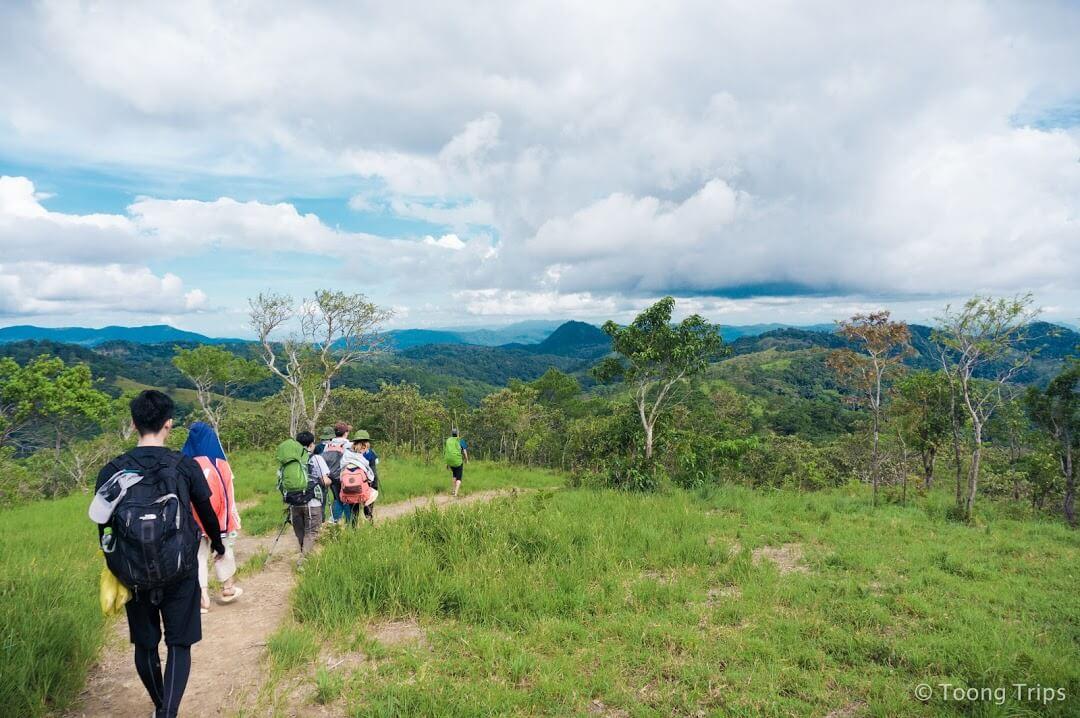 đoàn trekking băng qua những đồng cỏ xanh mướt