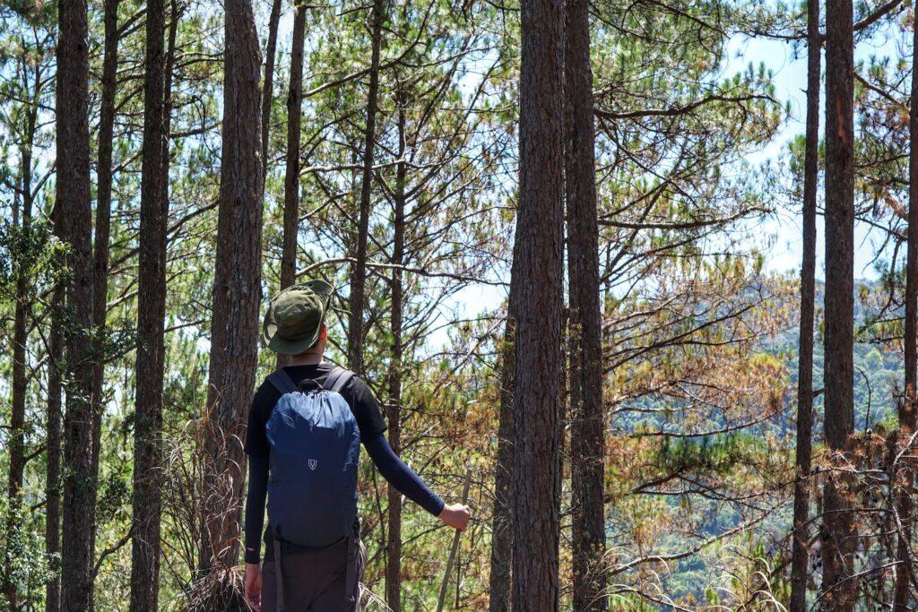 Cùng Tổ Ong trải nghiệm núi rừng Việt Nam