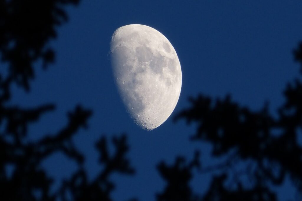 Đôi lúc bạn cũng có thể dựa vào ánh trăng để tìm lối ra cho mình